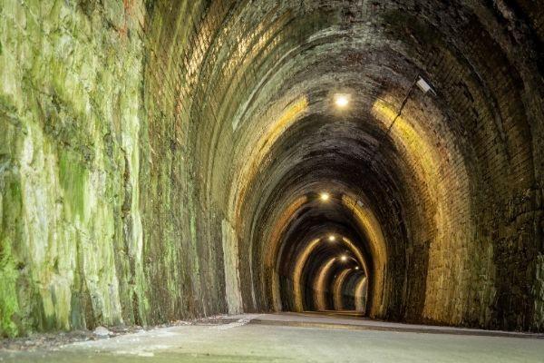 Tunnel on the Tarka Trail near Bedeford