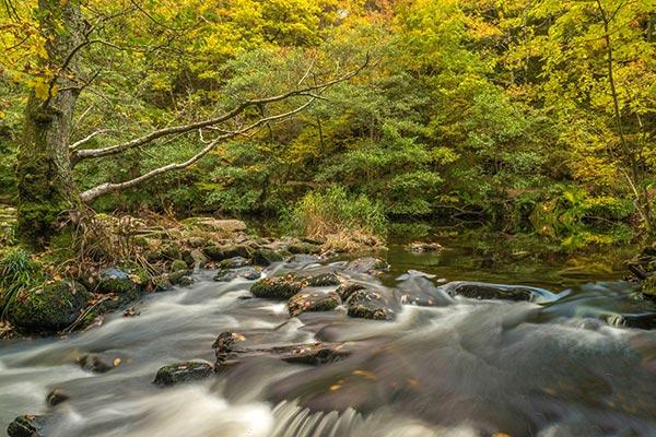 River Teign near Chagford