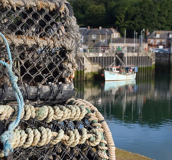 Lobster pots in Padstow Harbour