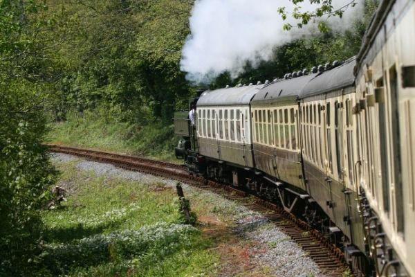 Totnes steam train