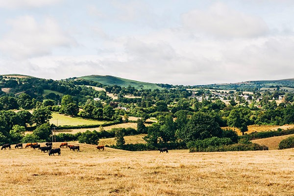 View of Chagford from Dartmoor National Park