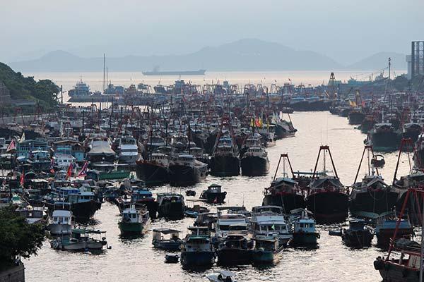Aberdeen fishing fleet