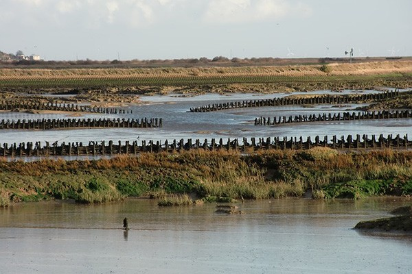 View across an Essex saltmarsh
